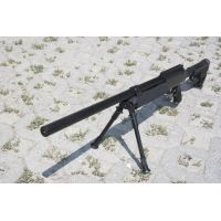 Well MB06B sniper
